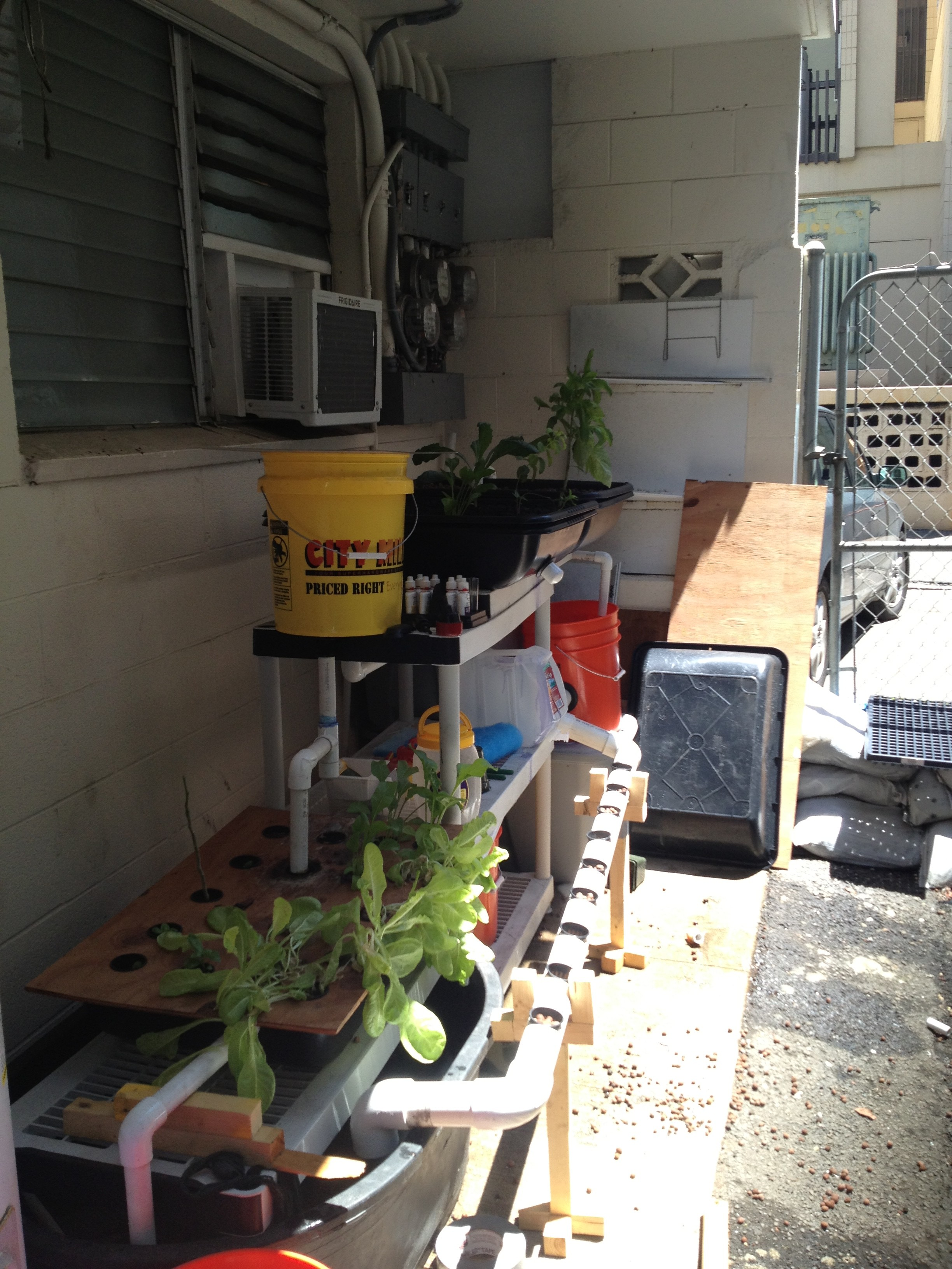 Back Porch Aquaponics System Update