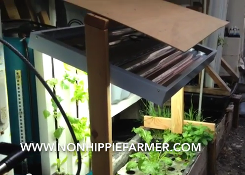 Vertical to Media to DWC Backporch Apartment Aquaponics System Update